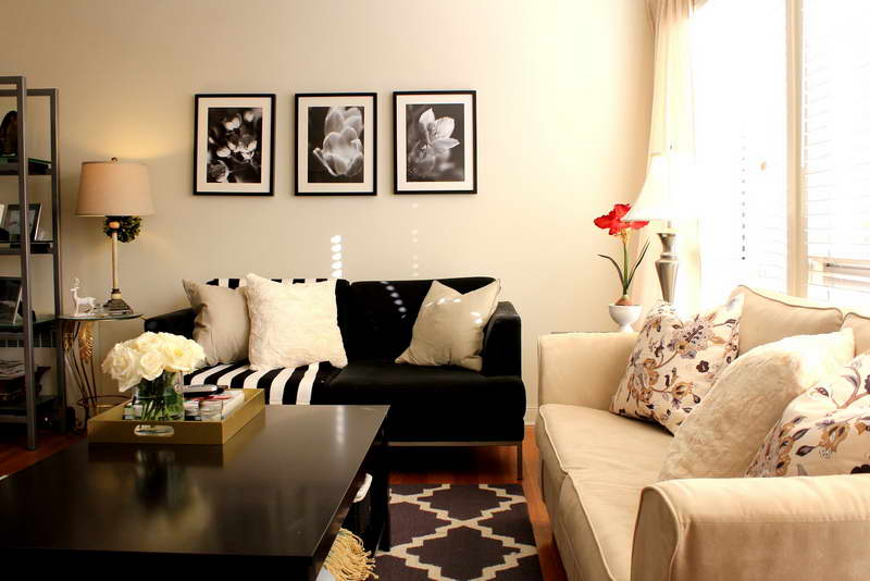 Idea For Decorate Living Room - picture insights small living room ...